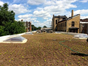 7,400 SF built-in-place green roof completed August 2016